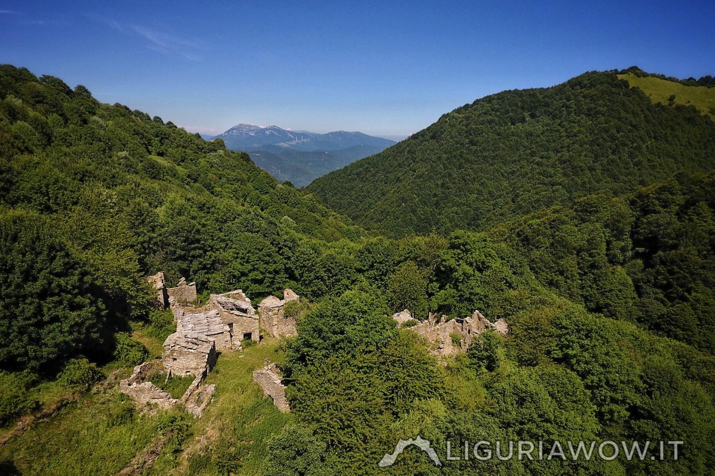 Poilarocca nel bosco del Fronté sopra Mendatica