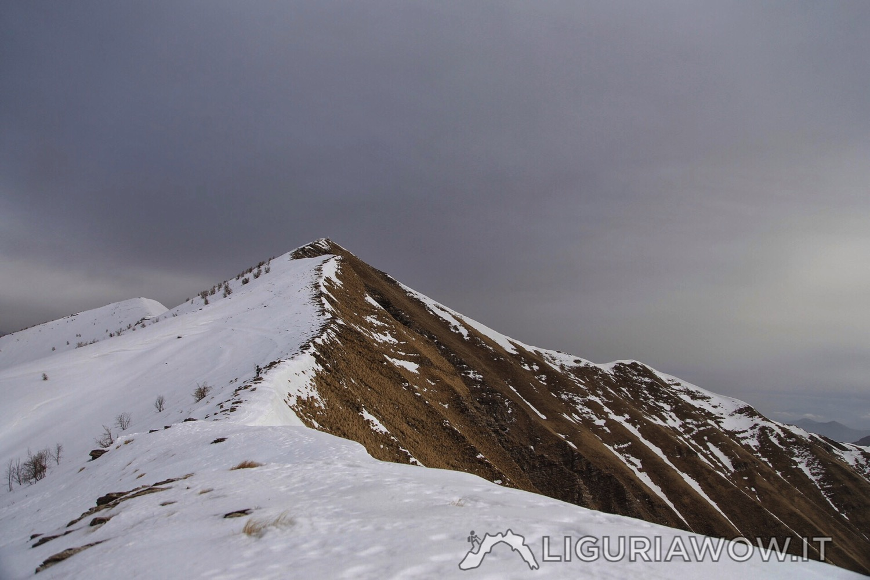 Monte Fronté