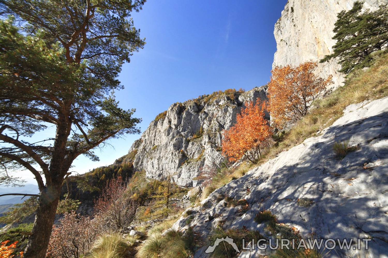 Monte Pietravecchia