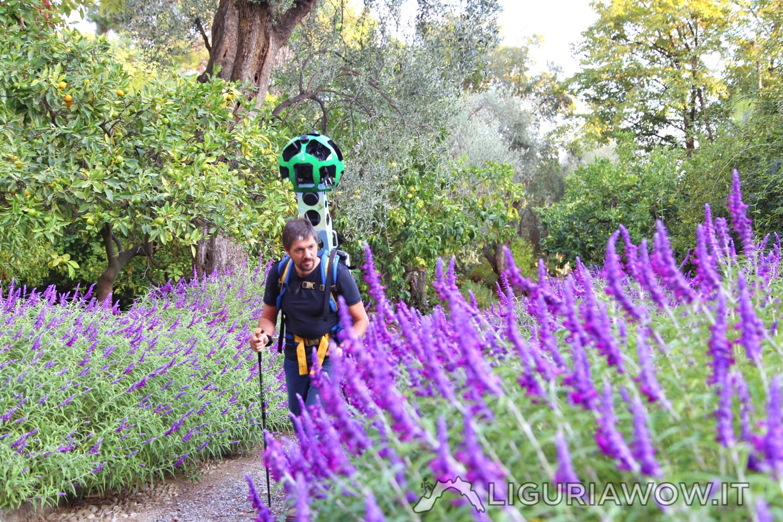 Fioriture ai Giardini Botanici Hanbury