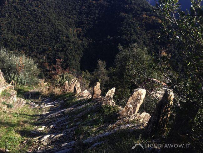 Sentiero da Passo Muratone a Pigna