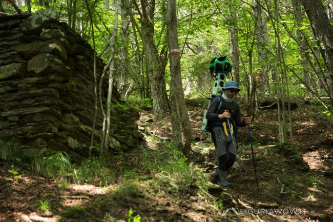 Casoni nel bosco tra Tenarda e Buggio